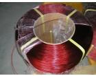 Ocelov� lano pota�en� PVC, pr�m�r 2,5mm